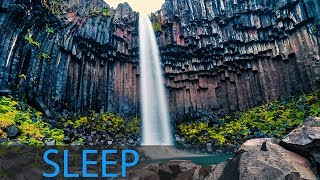 8 Hour Deep Sleep Music: Meditation Music, Calming Music, Soothing Music, Relaxation Music ☯1866