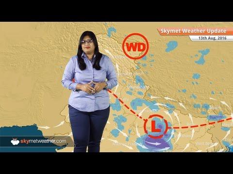 Weather Forecast for Aug 13: Heavy Monsoon rains in UP, MP, Uttarakhand, Bihar, light rain in Delhi