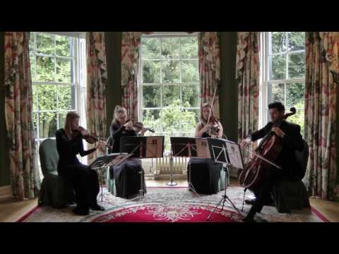 Habanera - Carmen (Bizet) Wedding String Quartet