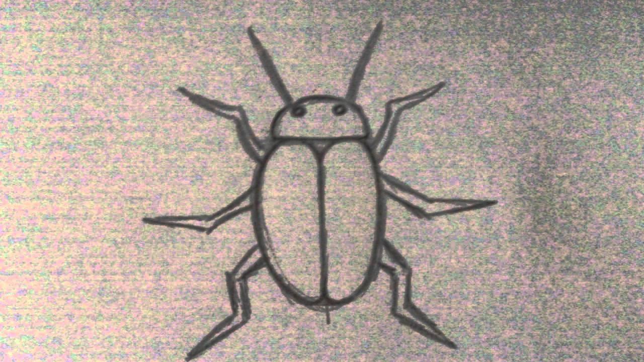 drawing a beetle tattoo art idea youtube