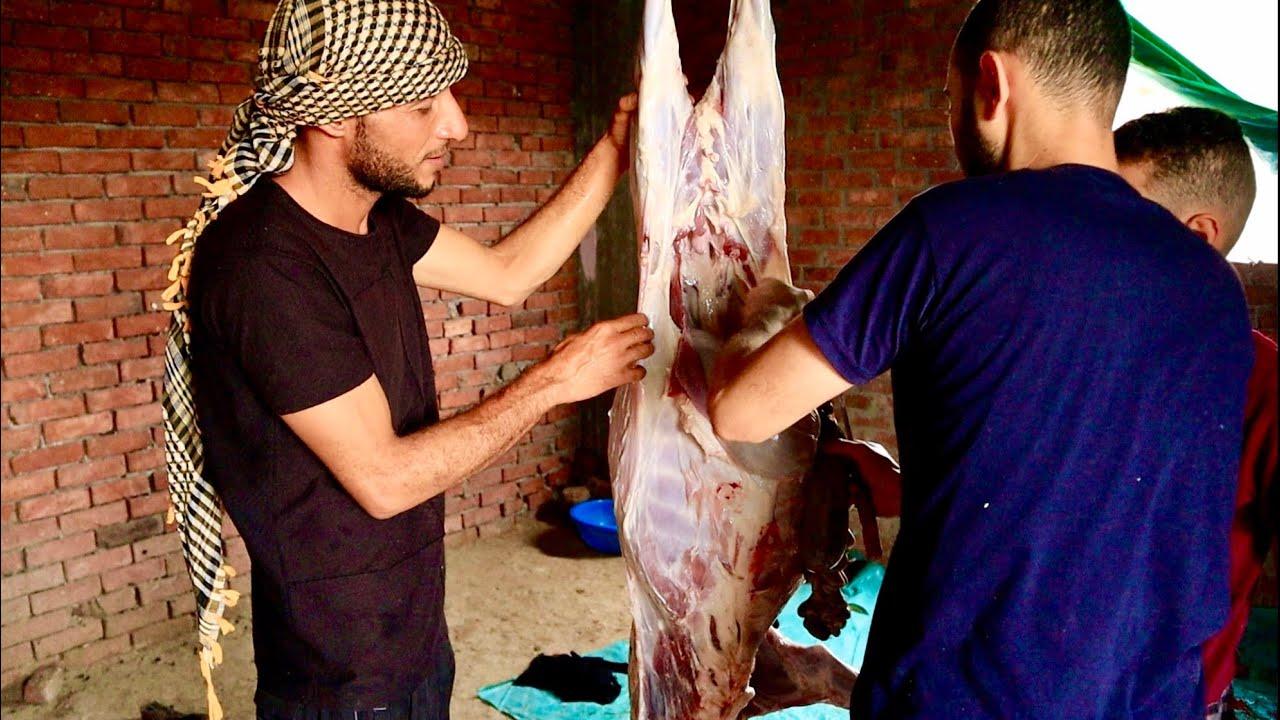 عيد اضحي مبارك   صيادين مصر