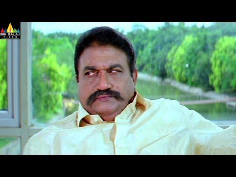 Jayaprakash Reddy Scenes Back to Back | Madatha Kaaja Telugu Movie Scenes | Sri Balaji Video