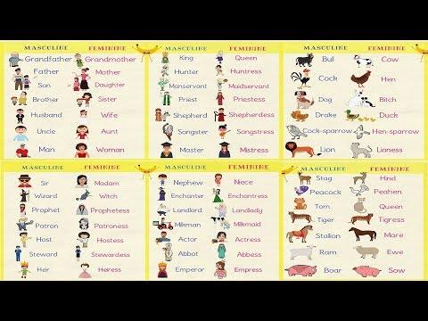 Gender Of Nouns In English Grammar   Useful Masculine And Feminine List