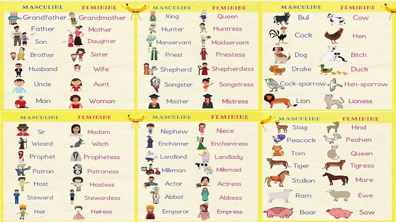Gender of nouns in english grammar masculine and feminine also rh youtube