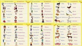 Gender Of Nouns In English Grammar | Useful Masculine And Feminine List