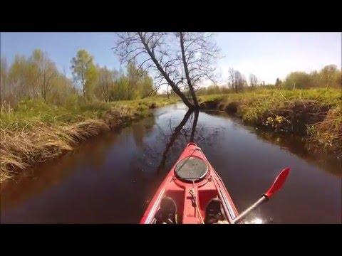 kayaking in small creek