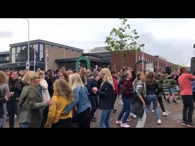 Paardenmarkt Rijnsburg 2019