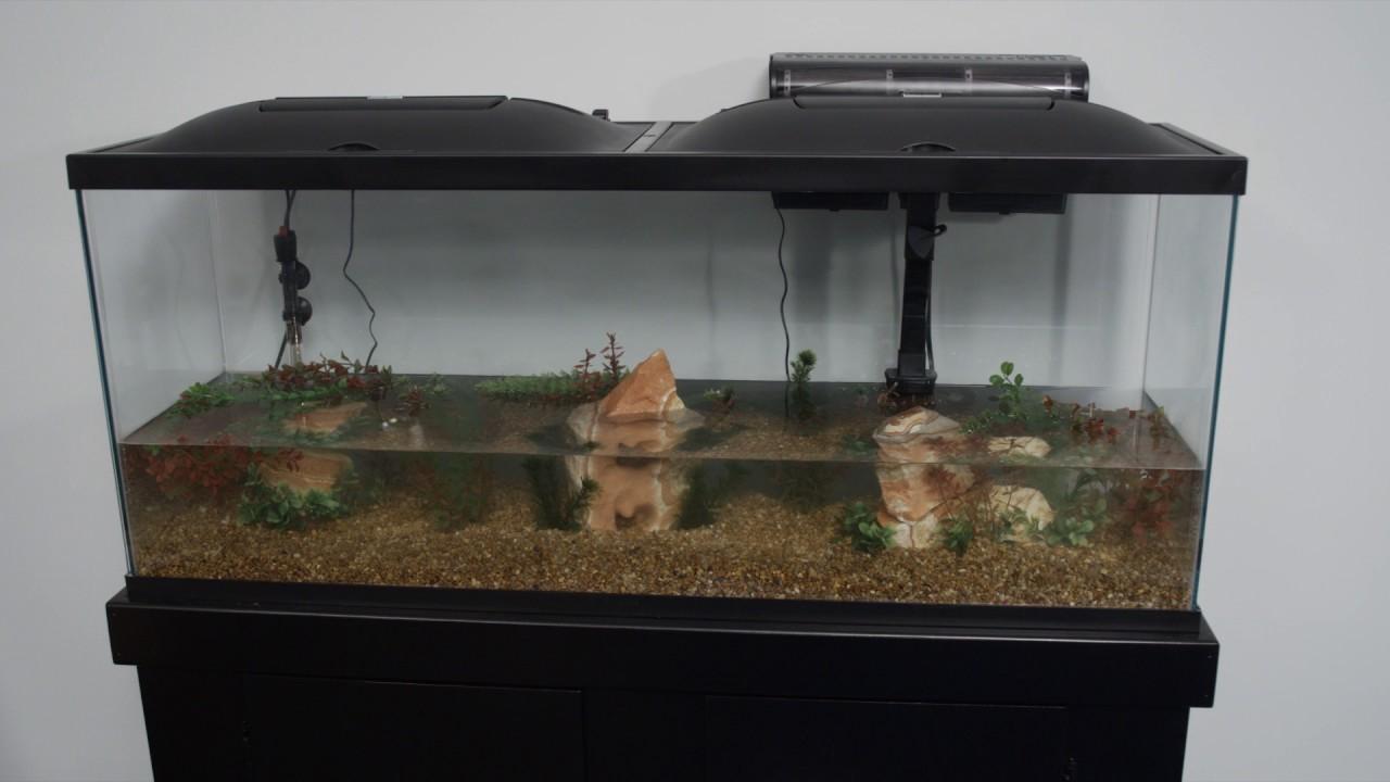 Marineland products 55 gallon aquarium kit setup youtube for 55 gallon fish tank setup