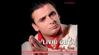 Liviu Guta - Am o boala cand ma imbat (Audio oficial)