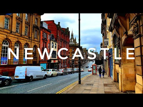 What to do in Newcastle?    Half-day Sightseeing Tour    Vlog 4