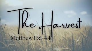 The Harvest  - Matthew 13:1-44 - Doug Allen