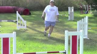 Dog Agility Jumps - Premier Canine Dog Jumps And Equipment