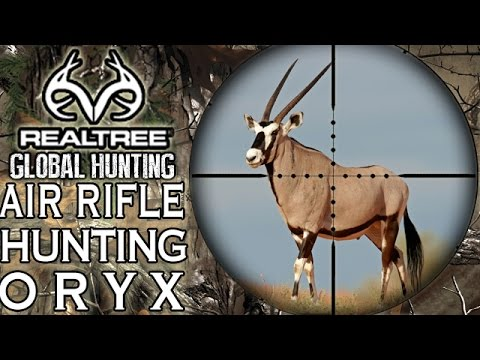 Benjamin Bulldog Big Bore Air Rifle Hunting in South Africa: Oryx