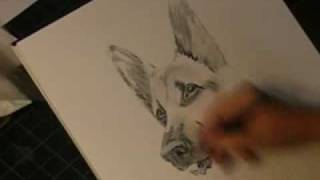 How to draw a Dog just in 15 min. (pencil on paper) by SlavaArt.com