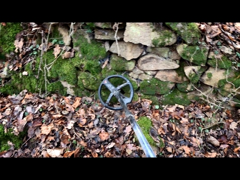 The Return - Metal Detecting Boar Territory - One Year After