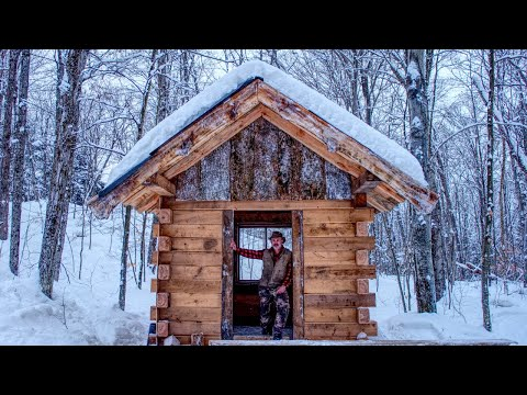 My Wife & I Clear the New Off Grid Log Cabin Site | Workshop Build