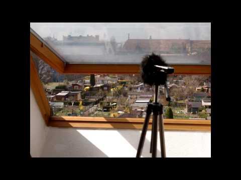 Aphex Twin - Stone in Focus (field recorded)