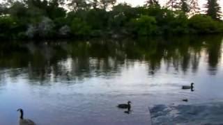 Yiruma River Flows in You - Xianning