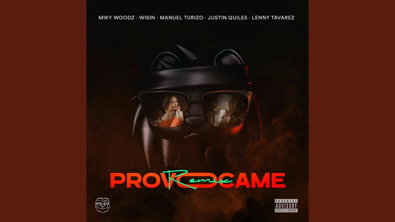 Provócame (Remix)