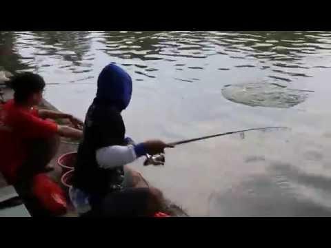 Lomba Mancing Jakarta Fishing Challenge 02