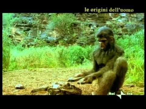EVOLUZIONE DELL'UOMO A011 riassunto parte precedetne e homo erectus senza