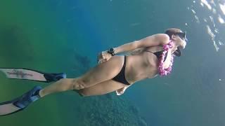 BLUE MAGIC :: Siren freediving through surreal haloclines