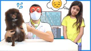 CAIO FINGE BRINCAR DE SER VETERINÁRIO e AJUDA o CÃO DODÓI -  Pretend Play With Veterinarian Doctor