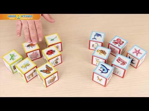 Умные IQ-кубики «Уши, лапы и хвосты», 50 игр для развития интеллекта
