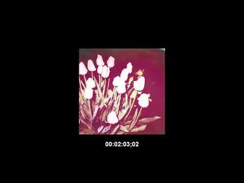 "[FREE] SZA Type Beat 2017 - '""RAINS"""