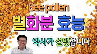 화분의 효능 ㅣ bee pollen l 약사 유튜버가 시원하게 알려드립니다
