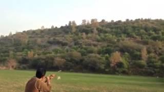 Skeet shooting Husnain