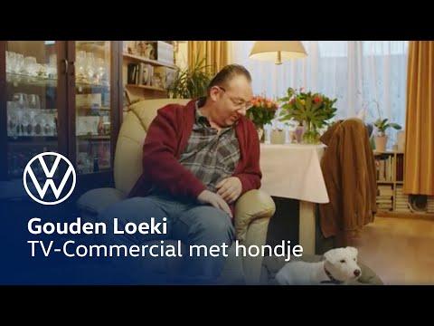 Volkswagen Hond Gouden Loeki Youtube