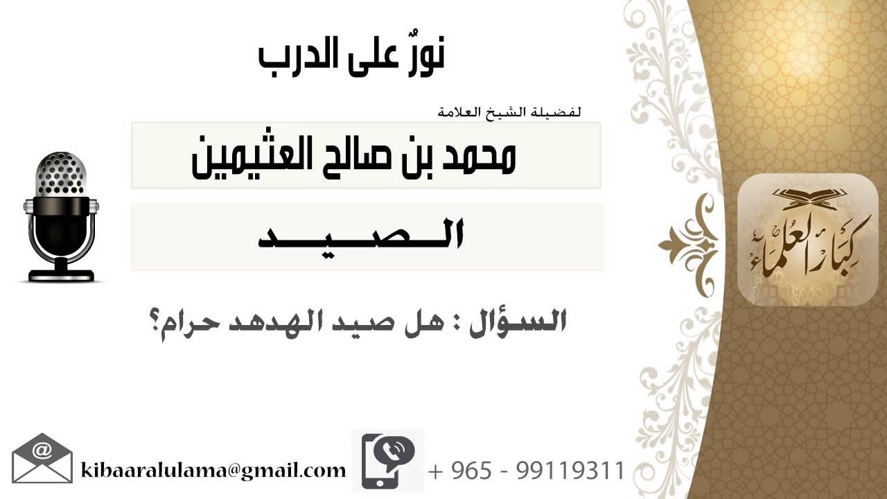 لقاء 82 من 91 هل صيد الهدهد حرام الشيخ ابن عثيمين مشروع كبار العلماء Youtube