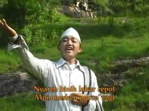 AL - ABROR [ CEWEK MATRE ]