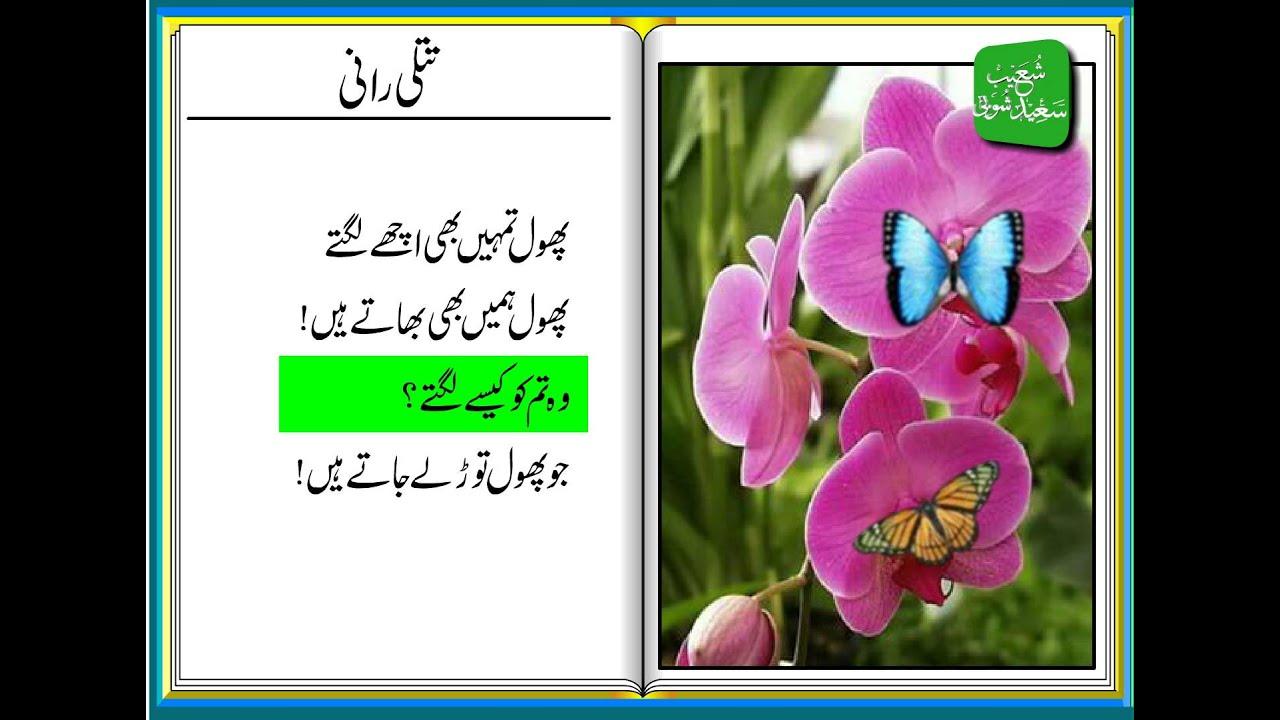 Uncategorized Poem On Flowers In English For Kids titli raani urdu poem for kids youtube kids