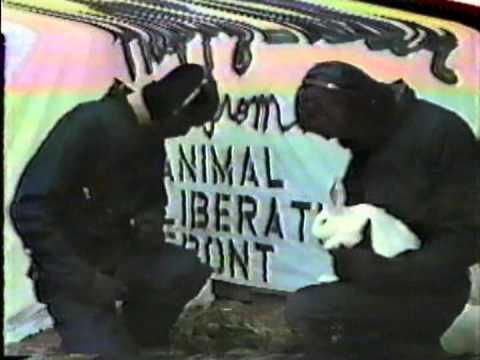 A.L.F. music video