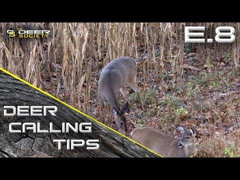 Deer Calling Tips - E.8