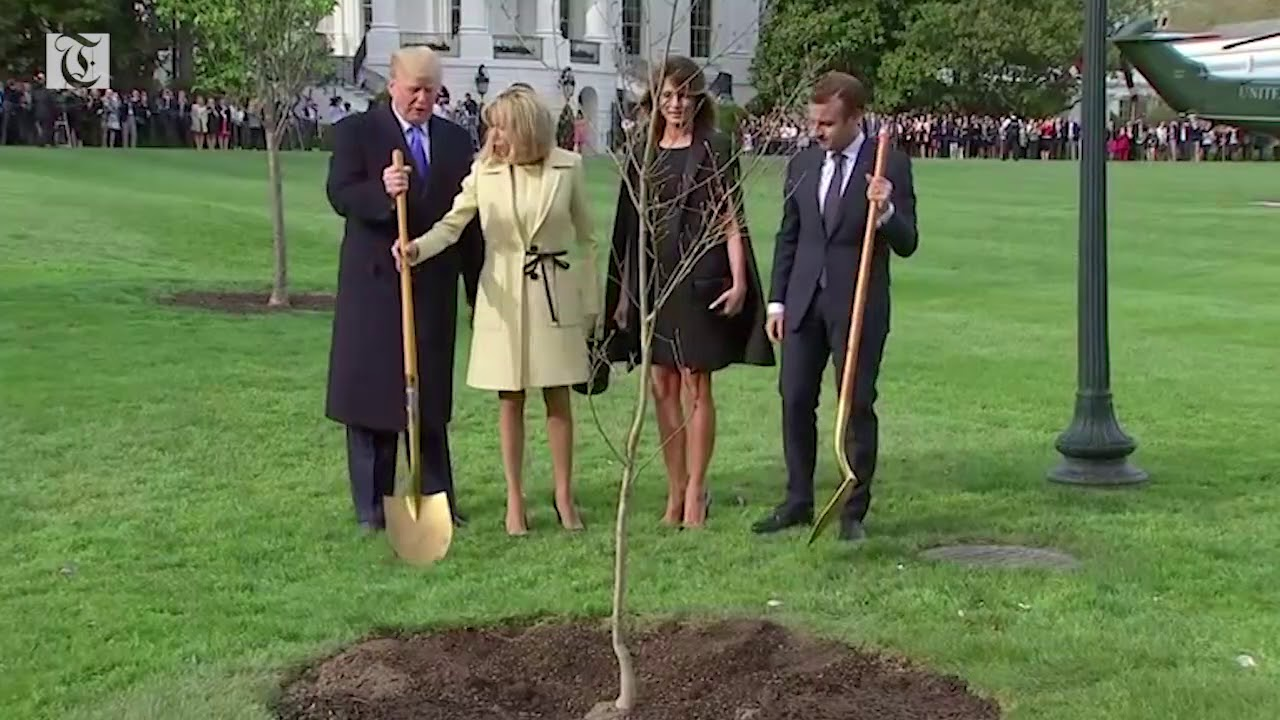 Trump, Macron plant a tree at the White House to begin state visit