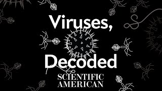 Decoded: How much do you really know about viruses?