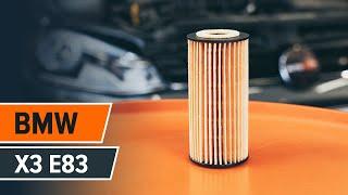 Montare Filtru ulei BMW X3 (E83): video gratuit
