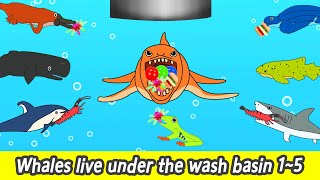 [EN] Whales live under the wash basin 1~5, 39min, cartoons for kids, whales adventureㅣCoCosToy