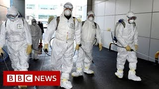 Coronavirus: South Korea has seen its confirmed cases spike - BBC News
