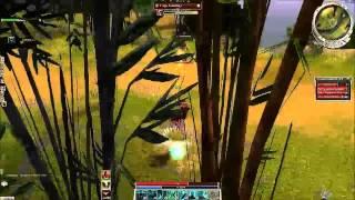 Guild Wars Factions Let