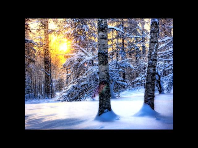 Изображение предпросмотра прочтения – МарияДеменкова читает произведение «Первый снег (Серебро, огонь и блёстки…)» В.Я.Брюсова