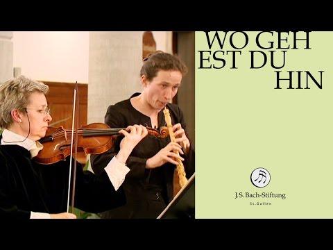 J.S. Bach - Cantata BWV 166 Wo gehest du hin? | 2 Aria (J. S. Bach Foundation)