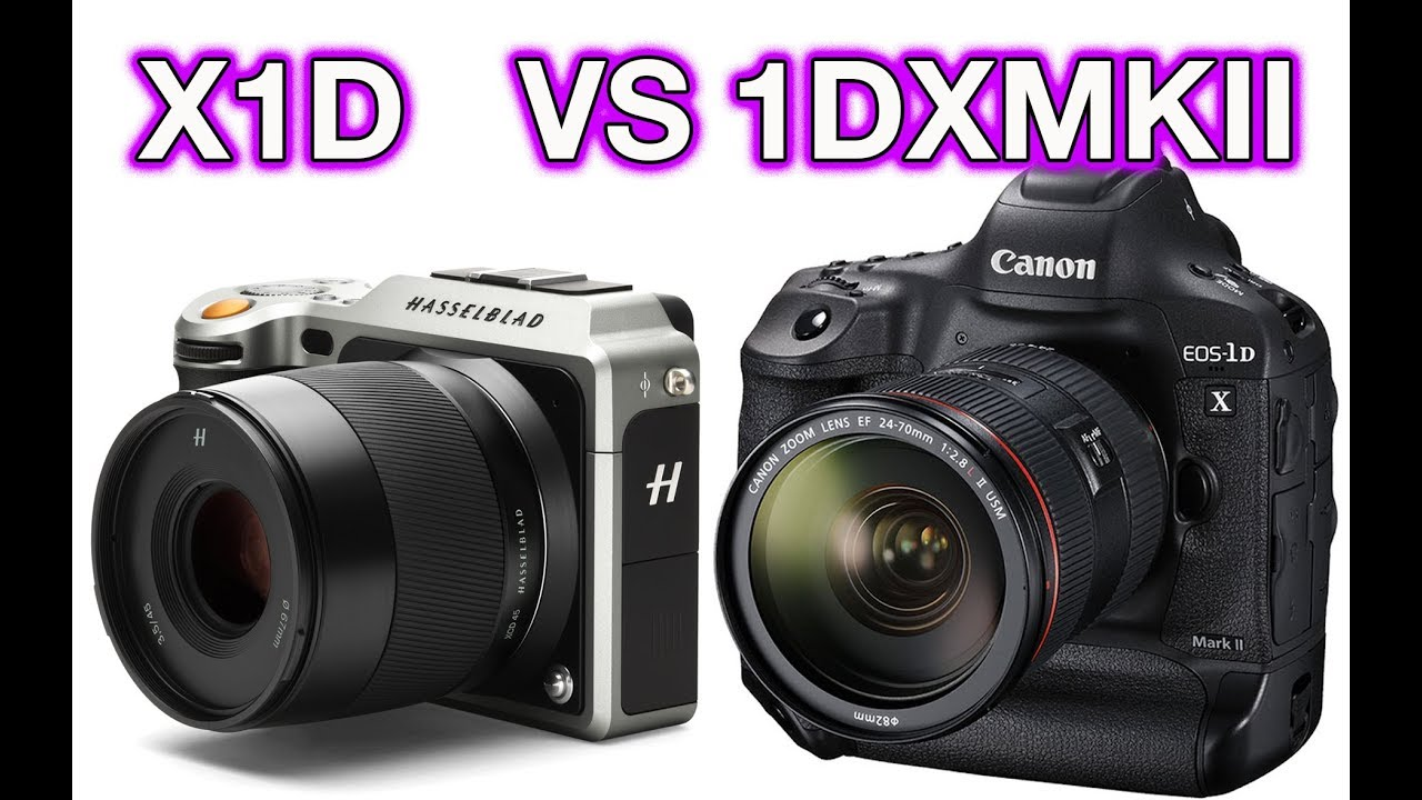 Hasselblad X1D vs Canon 1DX MKII