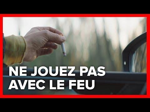 Feux de forêt : les pompiers appellent à la vigilance dans le Languedoc et le Roussillon - - France 3 Occitanie