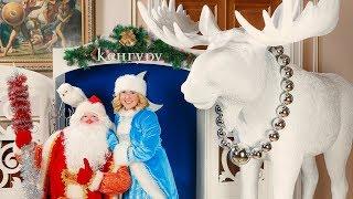 Новогодняя елка в салонах «Кенгуру»  | Проекты Aira.ru(, 2016-01-18T14:07:43.000Z)