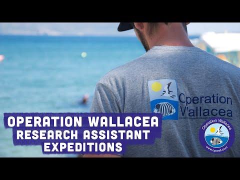 Operation Wallacea
