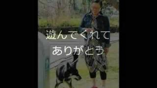 柴田理恵さん著「晴太郎」~三本足の天使~ という本を読んで、 できた...